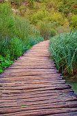Wood path in the Plitvice national park at autumn