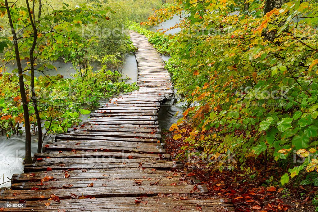 Wood path in the Plitvice national park in autumn stock photo