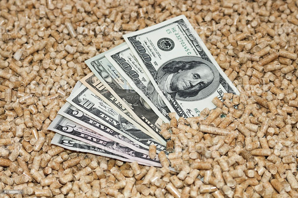 Wood pellets and money, dollars.The cat litter. stock photo