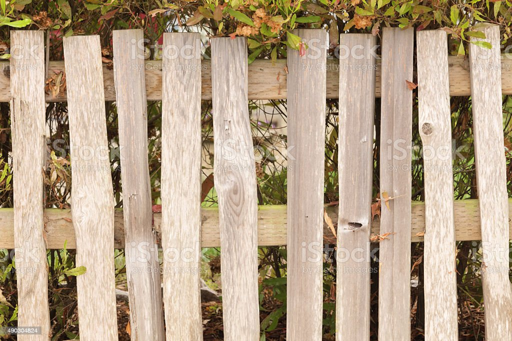 Wood Picket Fence Architecture stock photo