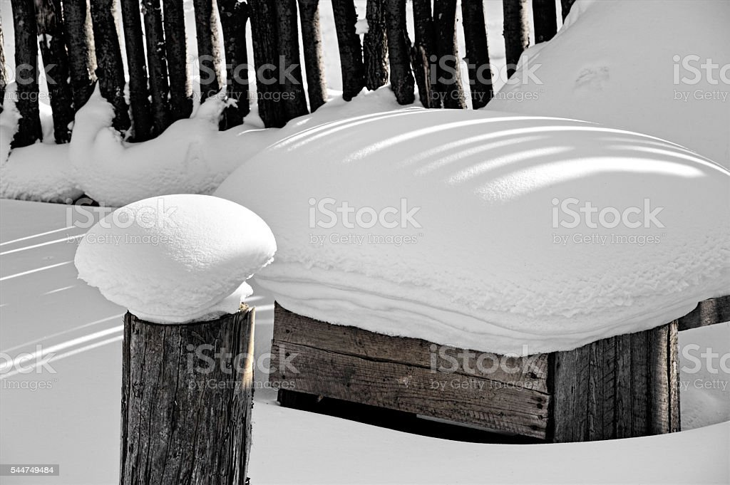 Wood piles covered by snow at winter stock photo