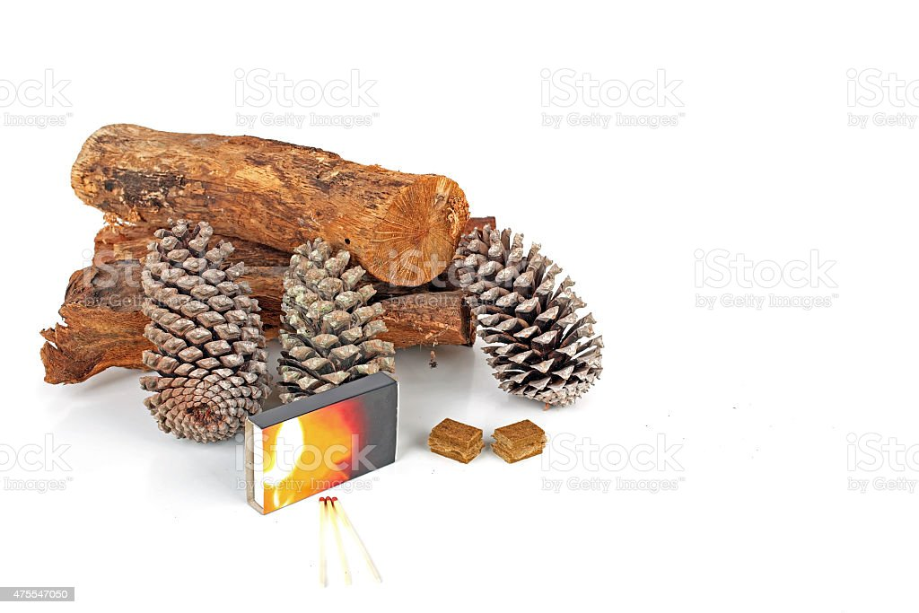 Wood, pineapple cones and matches for making the fire stock photo