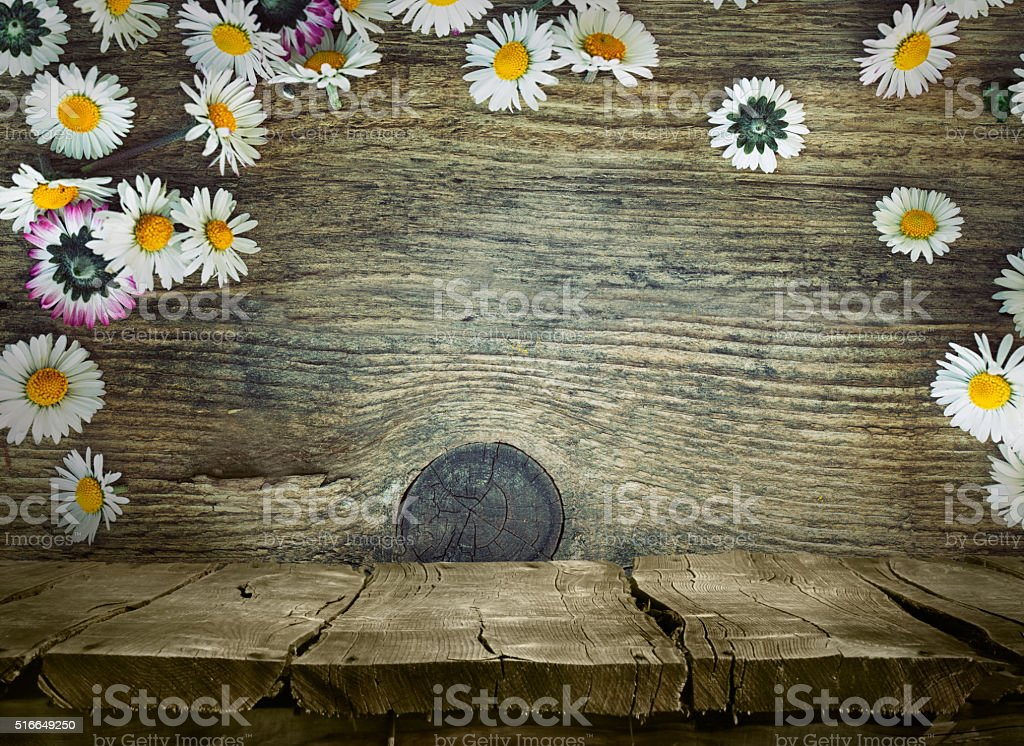 Wood planks with daisies stock photo