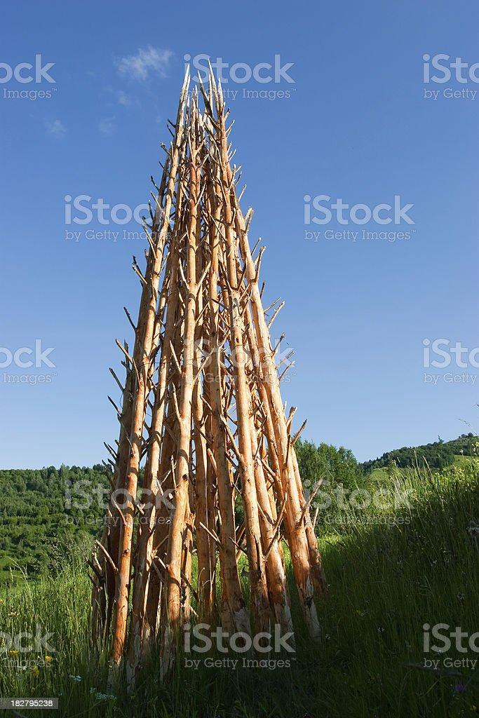 Wood Poles stock photo