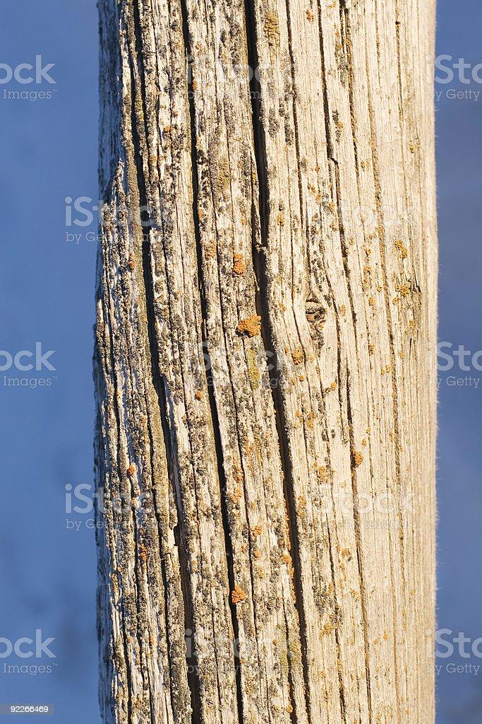 Wood Post royalty-free stock photo