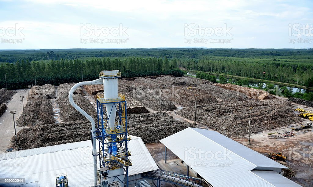 wood product with Biomass and wood base panel industry. stock photo