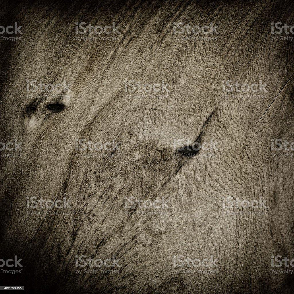 Wood raw board royalty-free stock photo