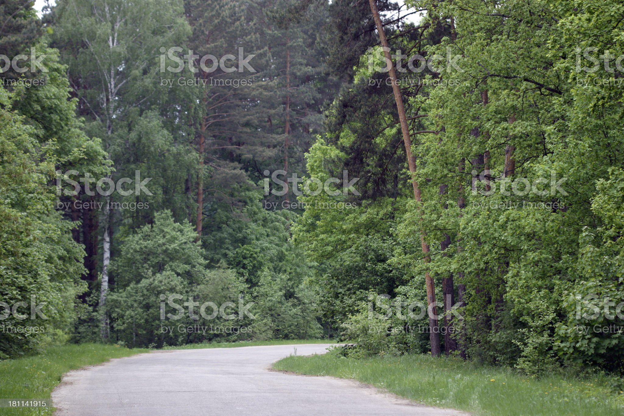 Wood road royalty-free stock photo