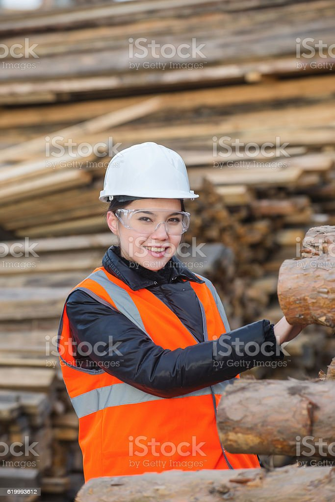 Wood specialist at work stock photo