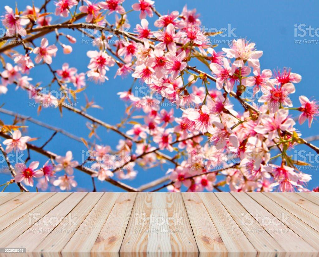 Wood table top on blur pink sakura flower background stock photo wood table top on blur pink sakura flower background royalty free stock photo dhlflorist Images