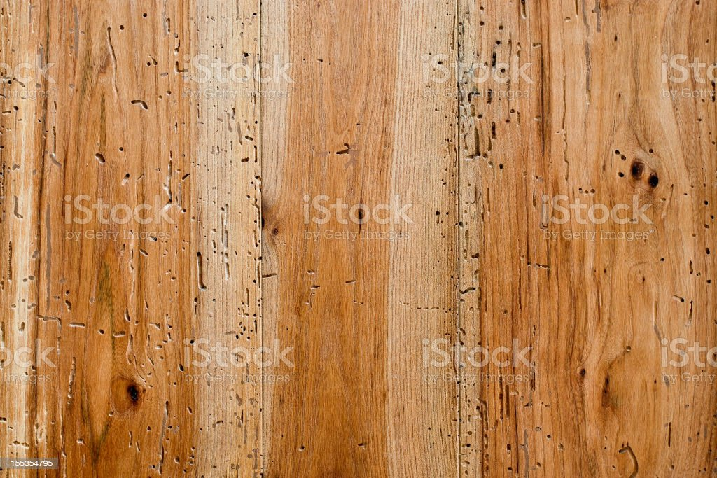 Wood texture: Aged elm stock photo