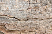 Wood texture background close up 14