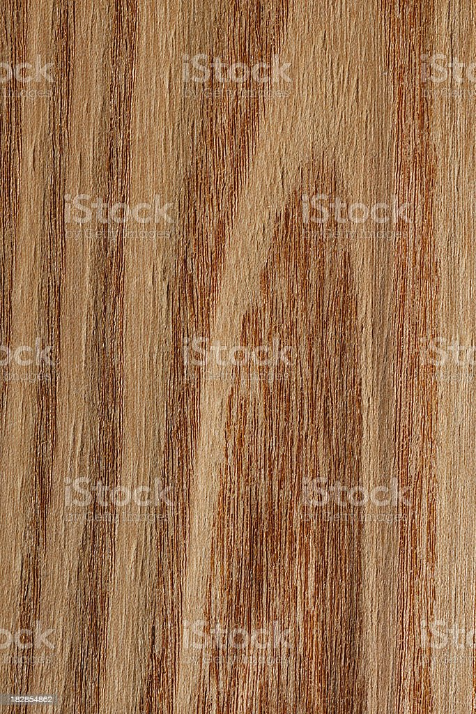 Wood Texture - Elm royalty-free stock photo