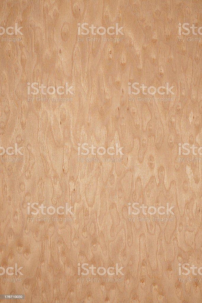 Wood texture - Erable Bird′s Eye Maple royalty-free stock photo