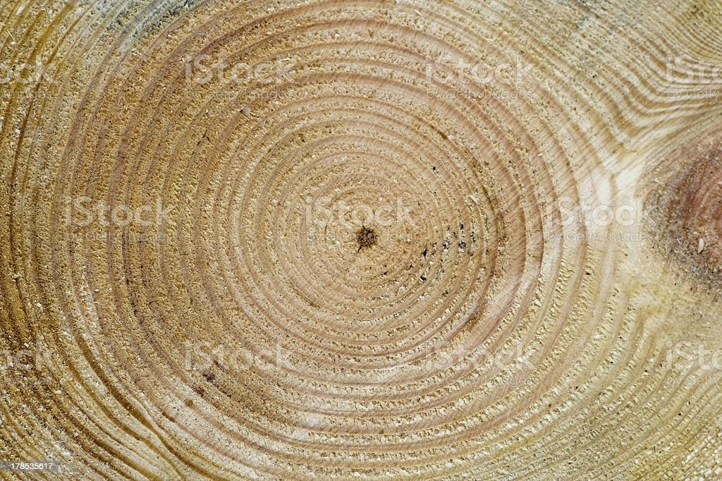 wood texture II royalty-free stock photo