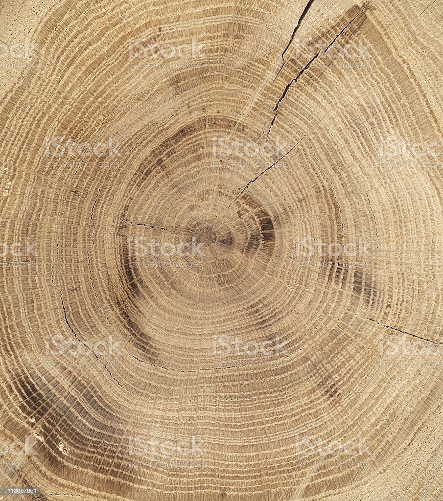 Wood Texture, oak royalty-free stock photo