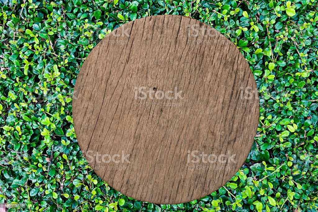 Wood texture on green grass background stock photo