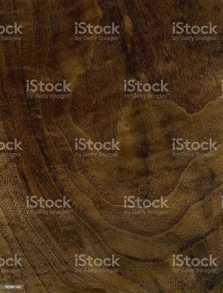 Wood Texture (Walnut tree) royalty-free stock photo