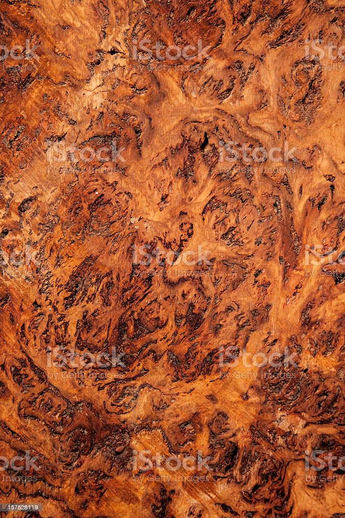 Wood Texture Red Gum Burl with swirl pattern royalty-free stock photo