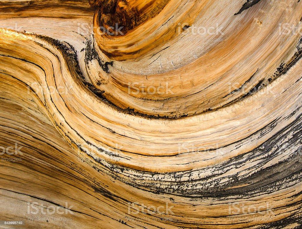 Wood wave stock photo