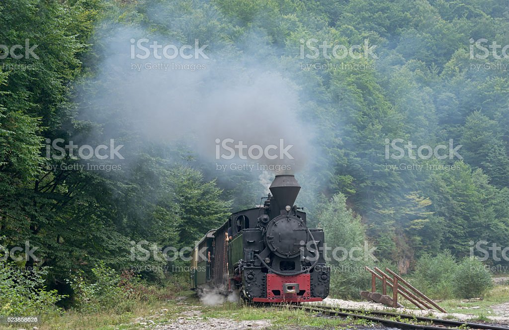 wood-burning locomotive against green trees background stock photo