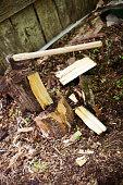 Woodcutting ax stuck in a log.