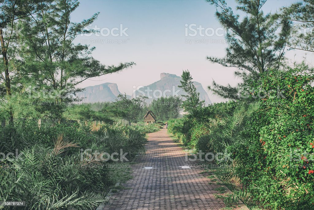 Wooded Cycle Lane stock photo