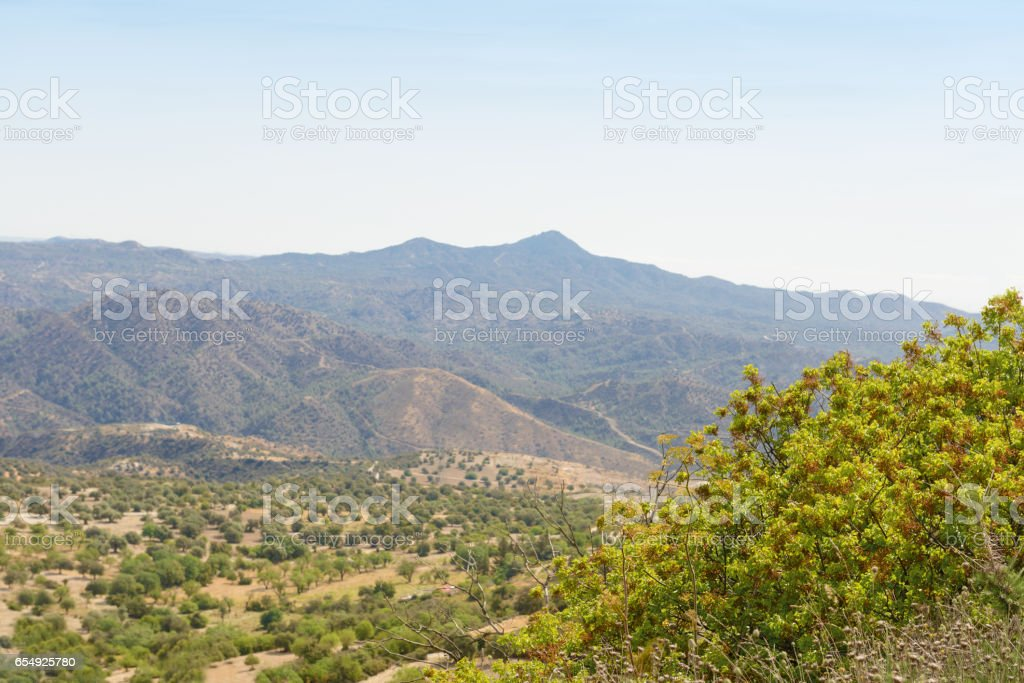 wooded slopes of the Troodos mountain in Cyprus stock photo
