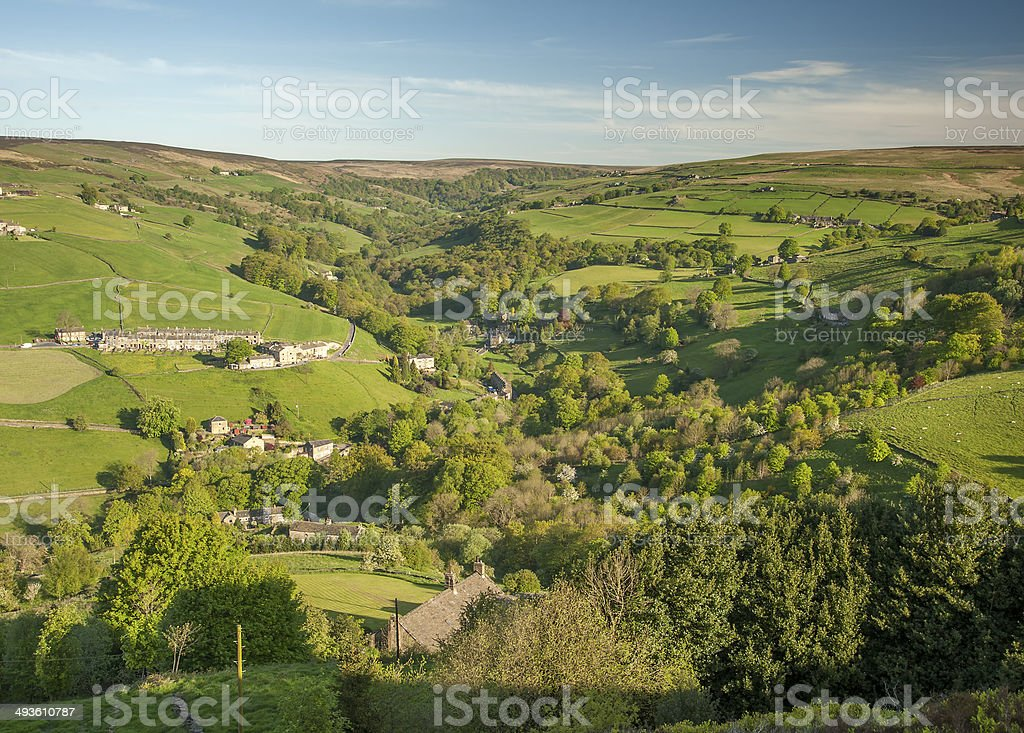 wooded summer valley stock photo