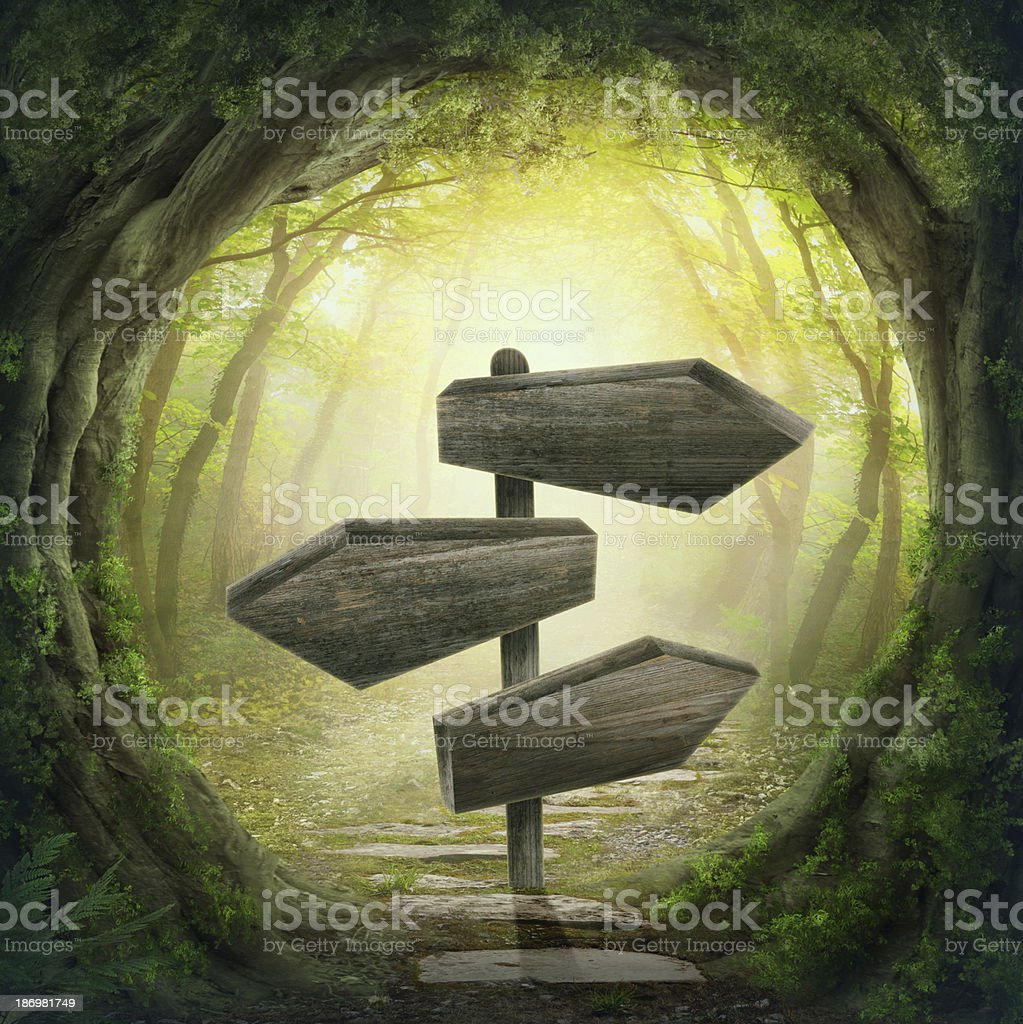 Wooden arrow road signs in forest stock photo