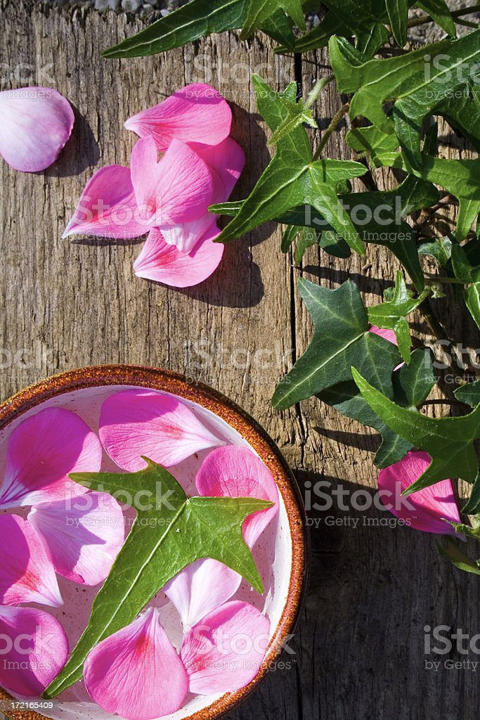 Wooden background and petals royalty-free stock photo