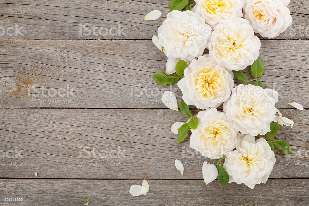 Wooden background with fresh rose flowers stock photo