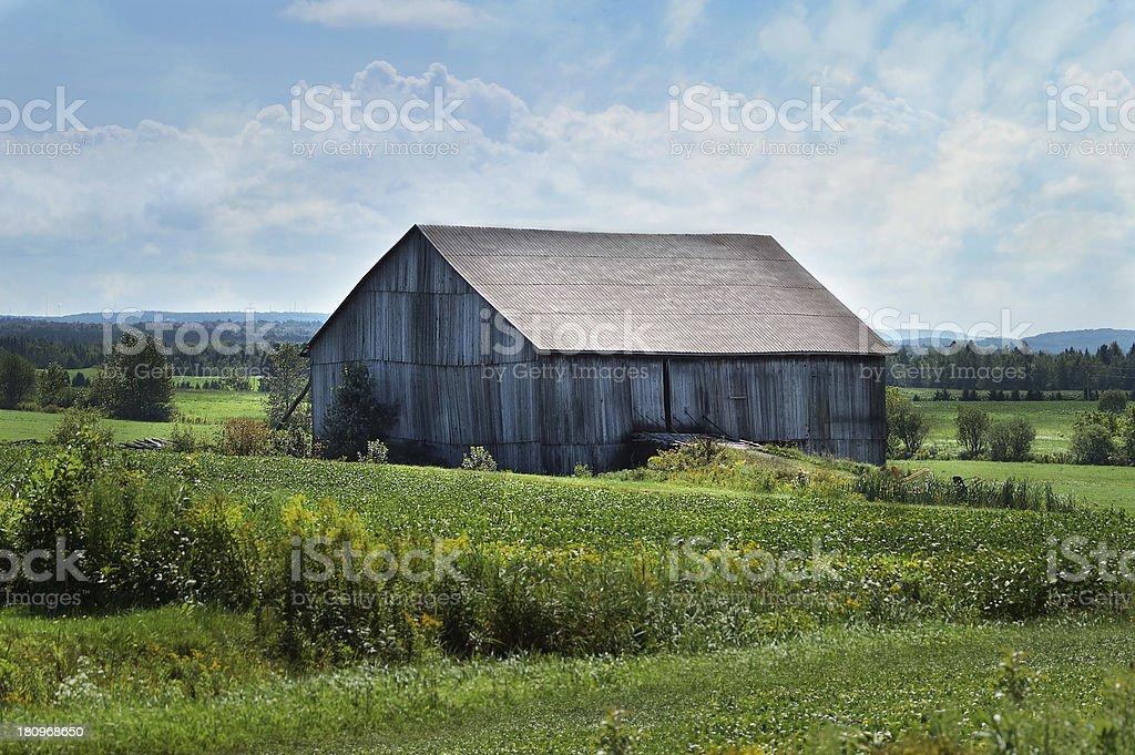 Wooden barn Farm landscape royalty-free stock photo