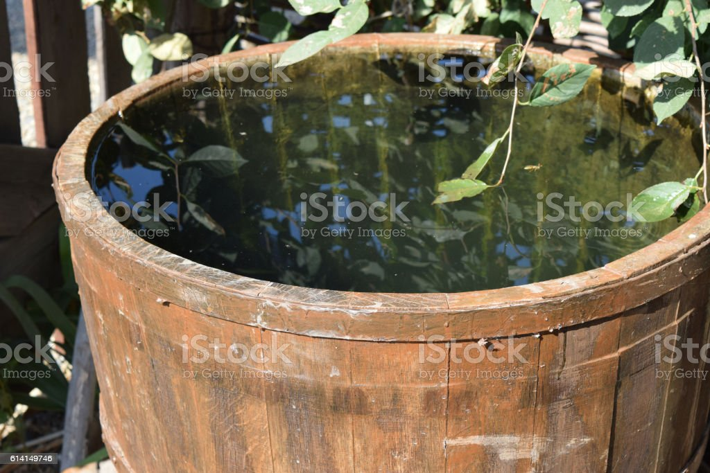 Wooden barrel filled with water stock photo