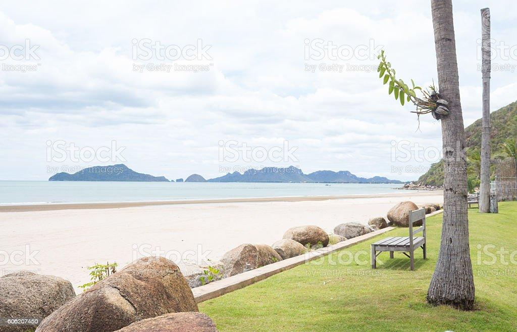 wooden beach chair in summer natural resort with green plant Стоковые фото Стоковая фотография