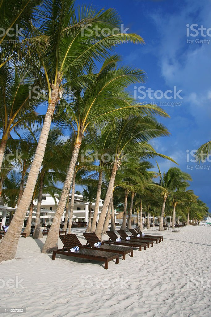 wooden beach chairs royalty-free stock photo