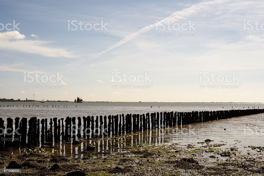 Wooden Beach Defences at Cudmore Grove Mersea stock photo