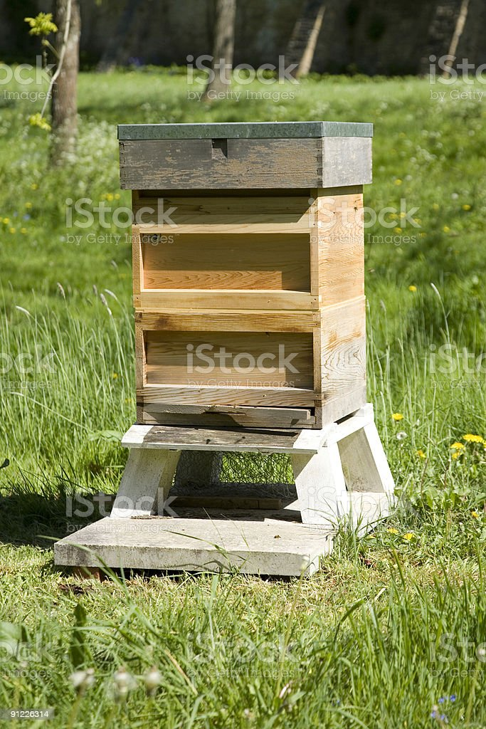 Wooden Beehive royalty-free stock photo