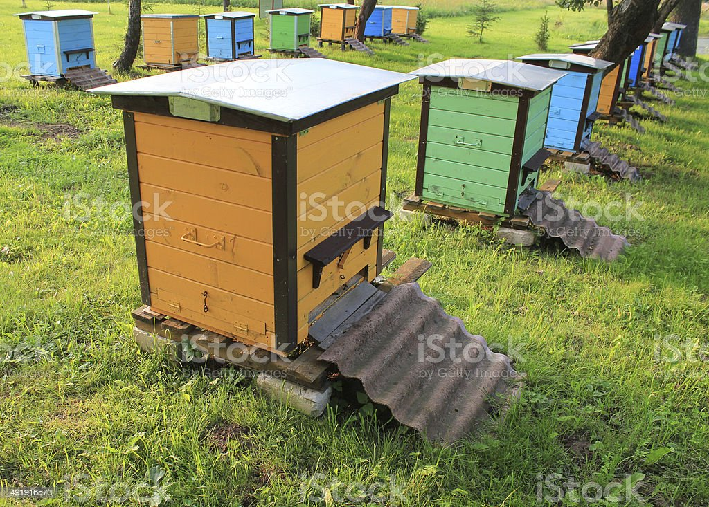 wooden beehives in the garden royalty-free stock photo