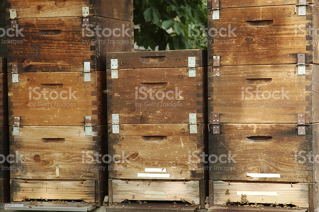 Wooden Beehives royalty-free stock photo