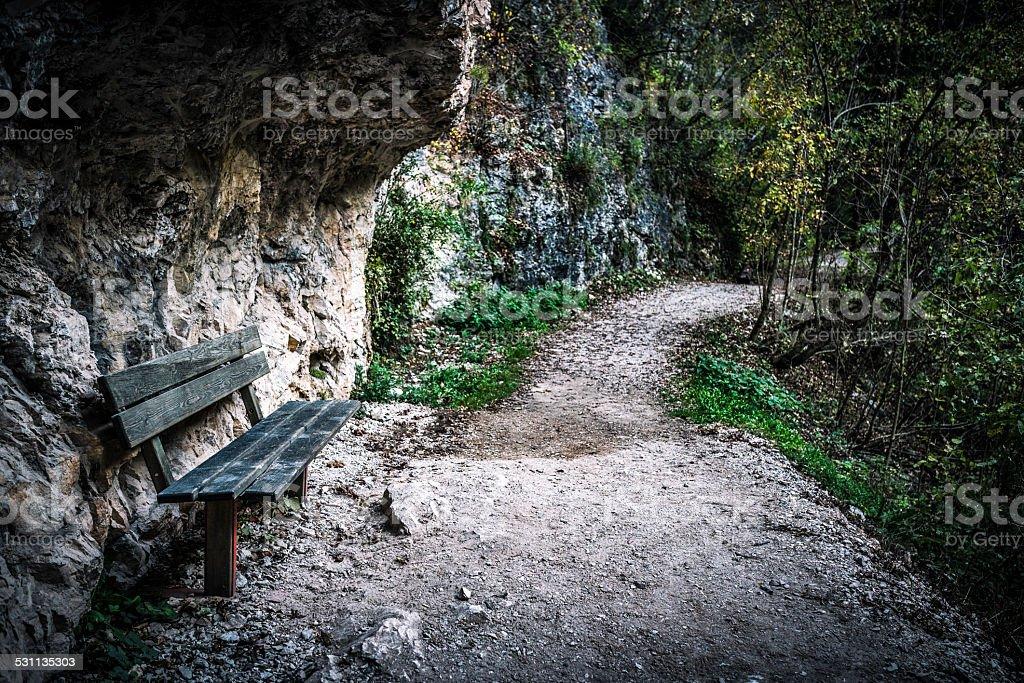 wooden bench along a mountain path, Val di Non stock photo