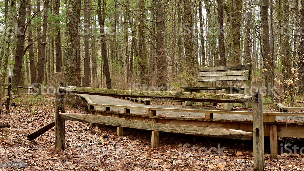Wooden Bench And Fence On Nature Trail stock photo