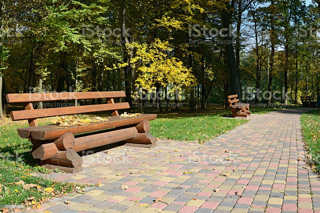 Wooden bench in the autumn park stock photo