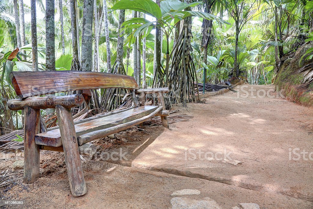 Wooden bench in tropical forest royalty-free stock photo