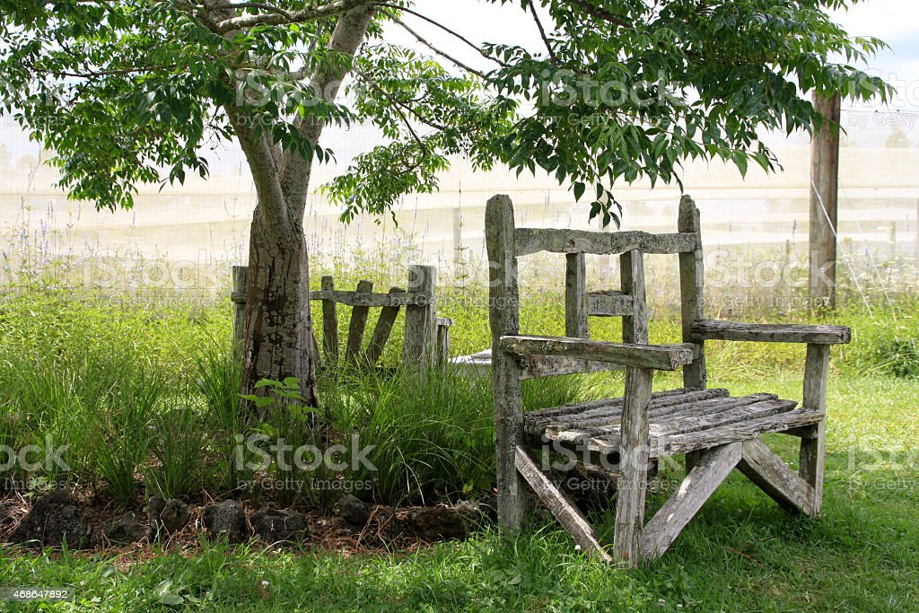 wooden bench standing in rustic garden under a tree royalty-free stock photo