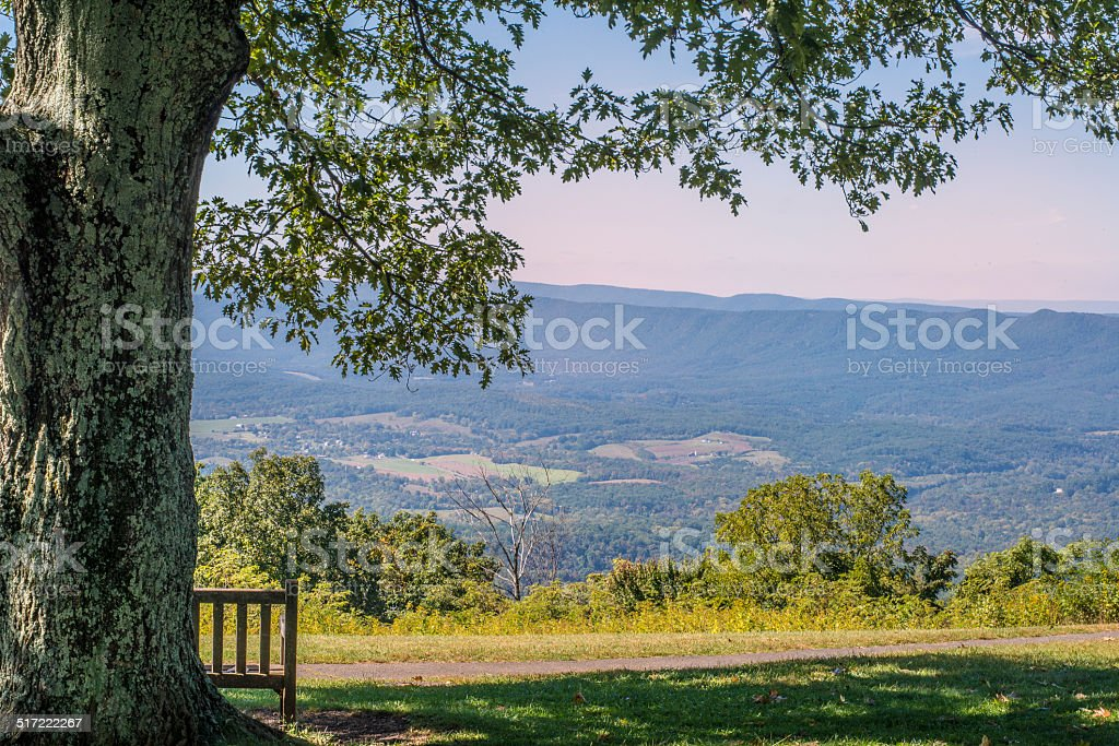 Wooden bench under tree overlooking Shenandoah Valley. stock photo