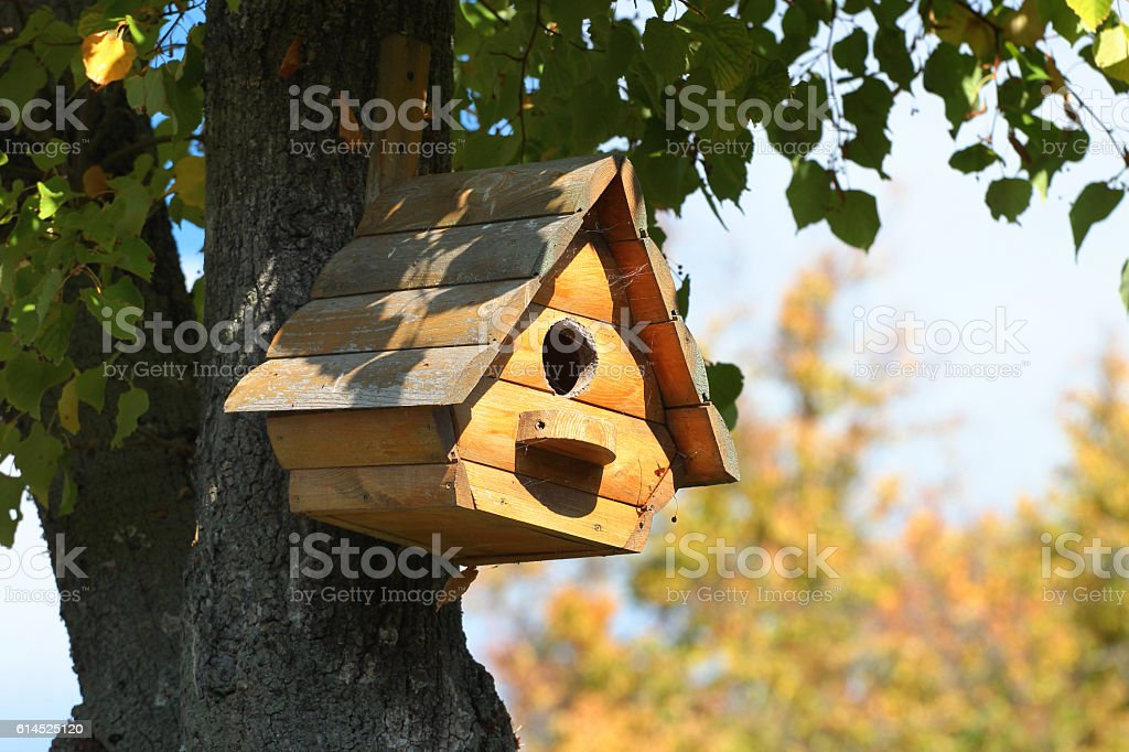 Wooden bird house on a tree stock photo