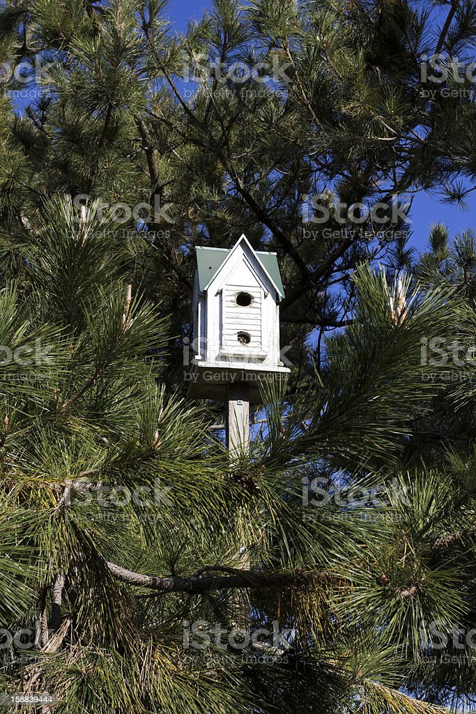Wooden birdhouse high up among the trees. royalty-free stock photo