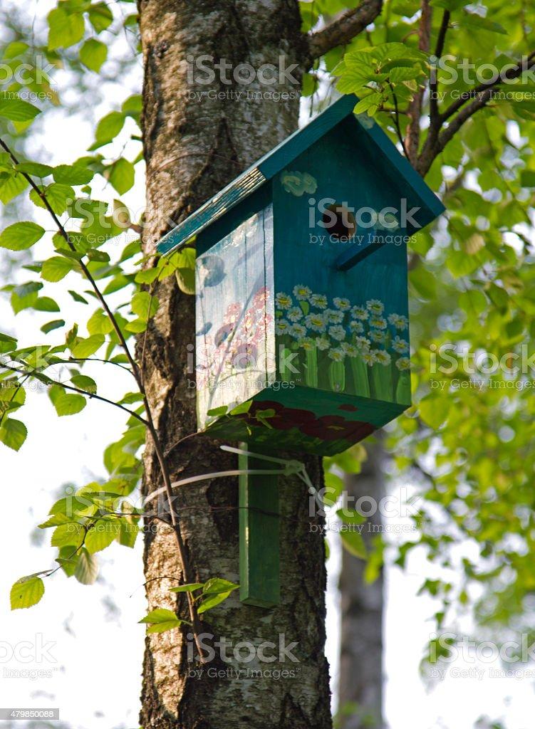 wooden birdhouse on birch stock photo
