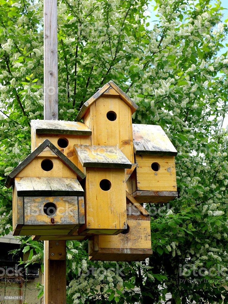 wooden birdshouses stock photo